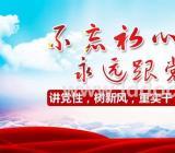 庆祝中国建党100周年主题征文