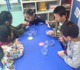 幼儿科学教育活动教案幼儿中班科学领域教案