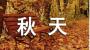 关于立秋的优美好句子