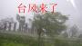 作文:台风来了