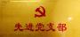 2021先进党支部事迹材料